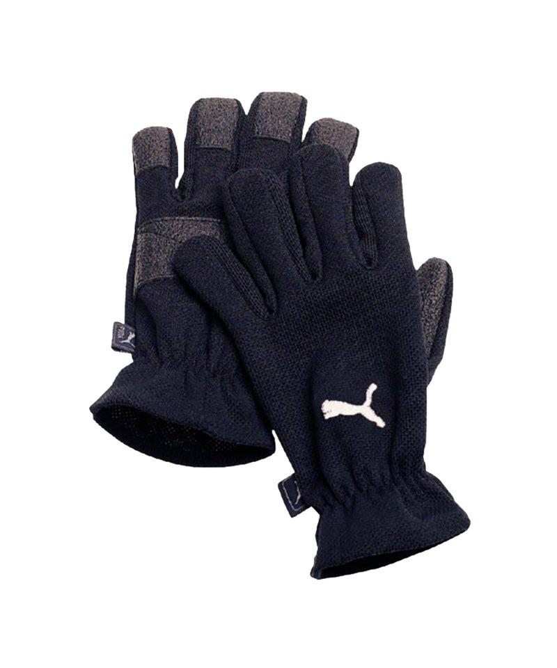 PUMA Winter Players Feldspielerhandschuh F01 - schwarz