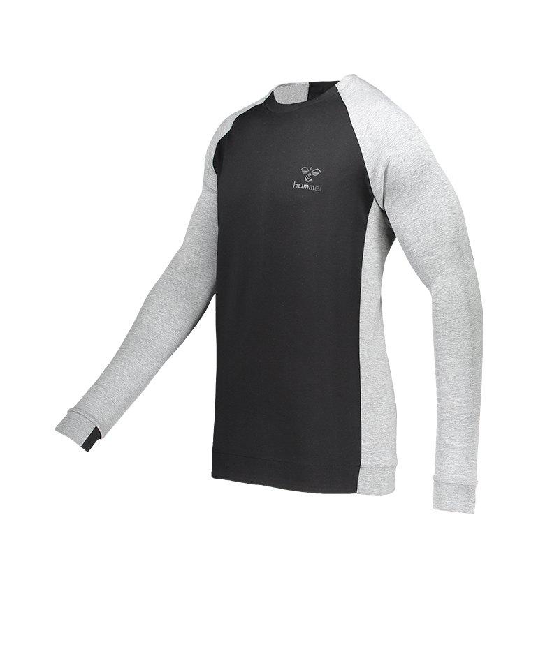 Hummel Guy Sweatshirt Grau F2006 - grau