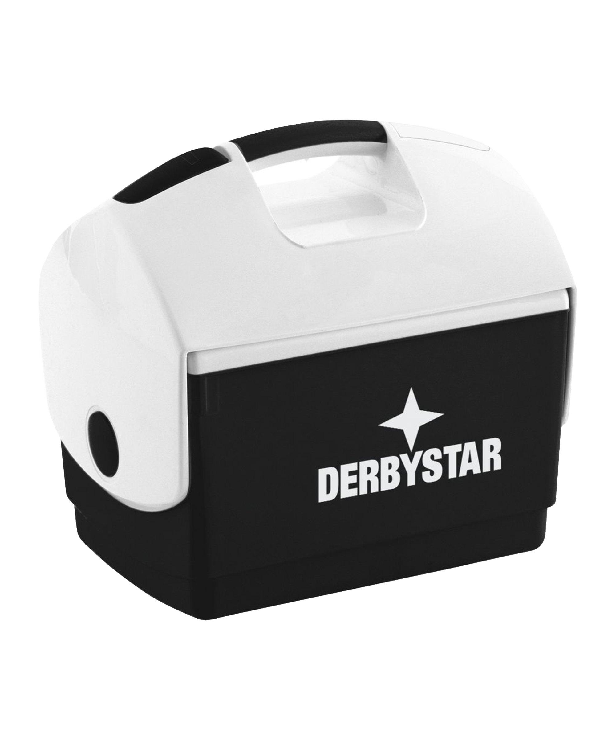 Derbystar Kühlbox 35x23x33cm Schwarz F120 - schwarz
