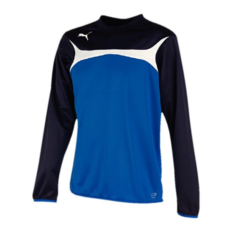 PUMA Sweatshirt Training Esito 3 Kinder F02 - blau