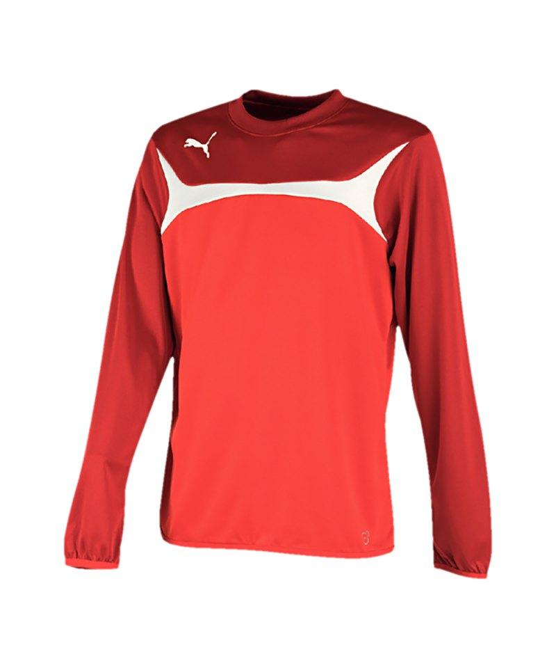 PUMA Sweatshirt Training Esito 3 Rot F01 - rot