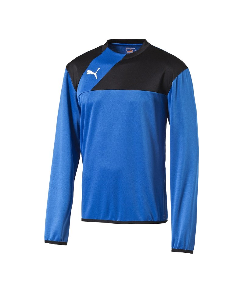 PUMA Training Sweatshirt Esquadra Kinder F23 - blau