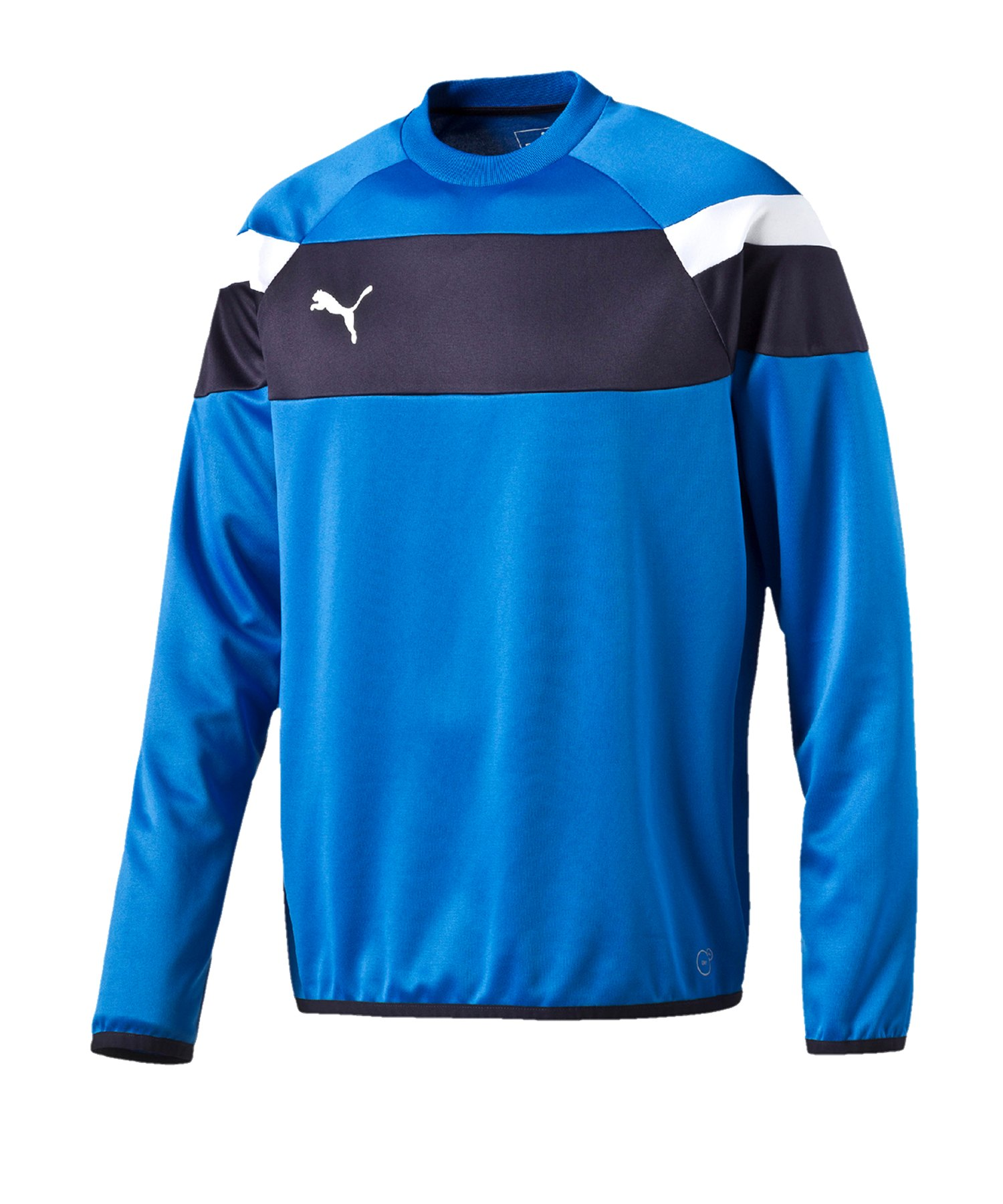 PUMA Spirit II Training Sweatshirt Kids F02 - blau