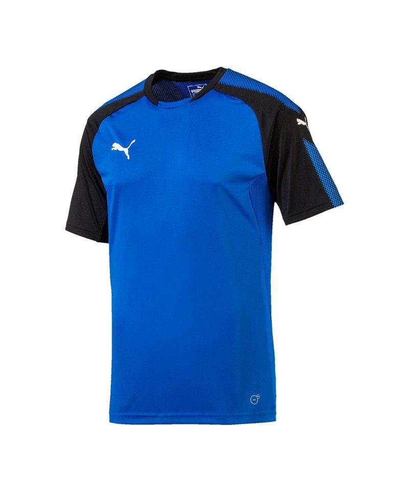 PUMA Trainingsshirt Ascension Blau Schwarz F02 - blau