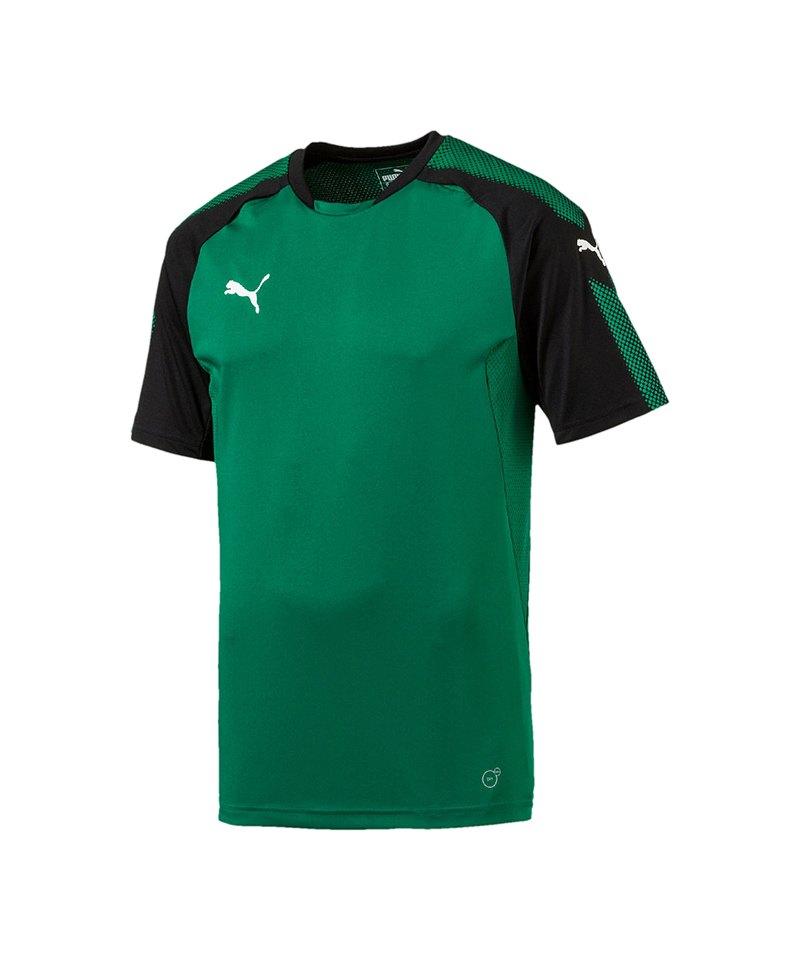 PUMA Trainingsshirt Ascension Grün Schwarz F05 - gruen