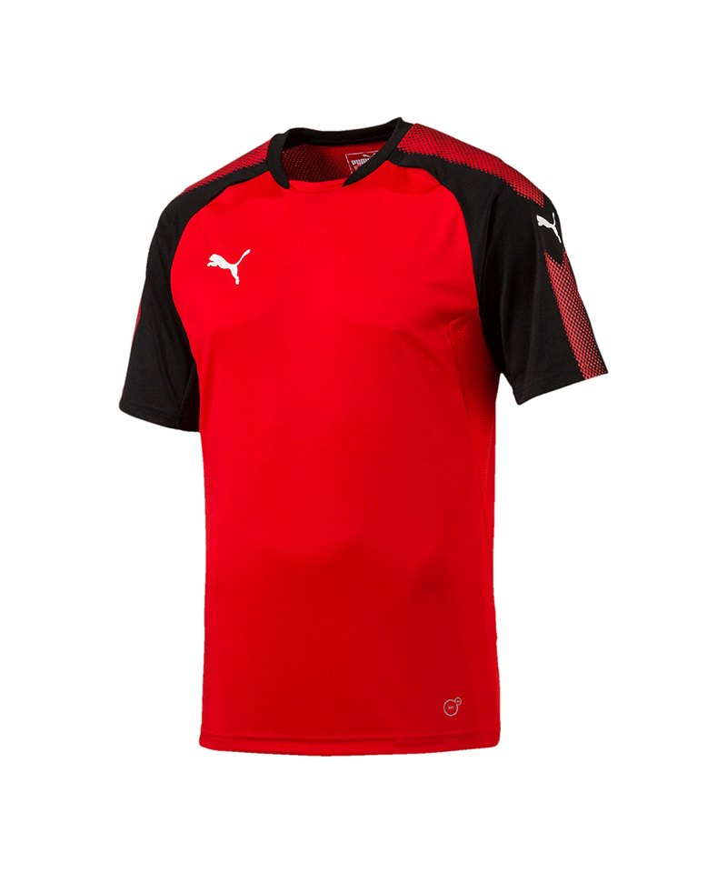 PUMA Trainingsshirt Ascension Rot Schwarz F01 - rot