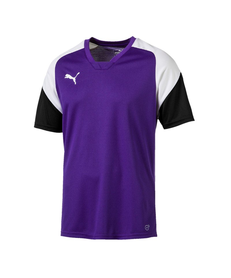 PUMA Esito 4 Trainingsshirt Kids Lila Weiss F10 - lila