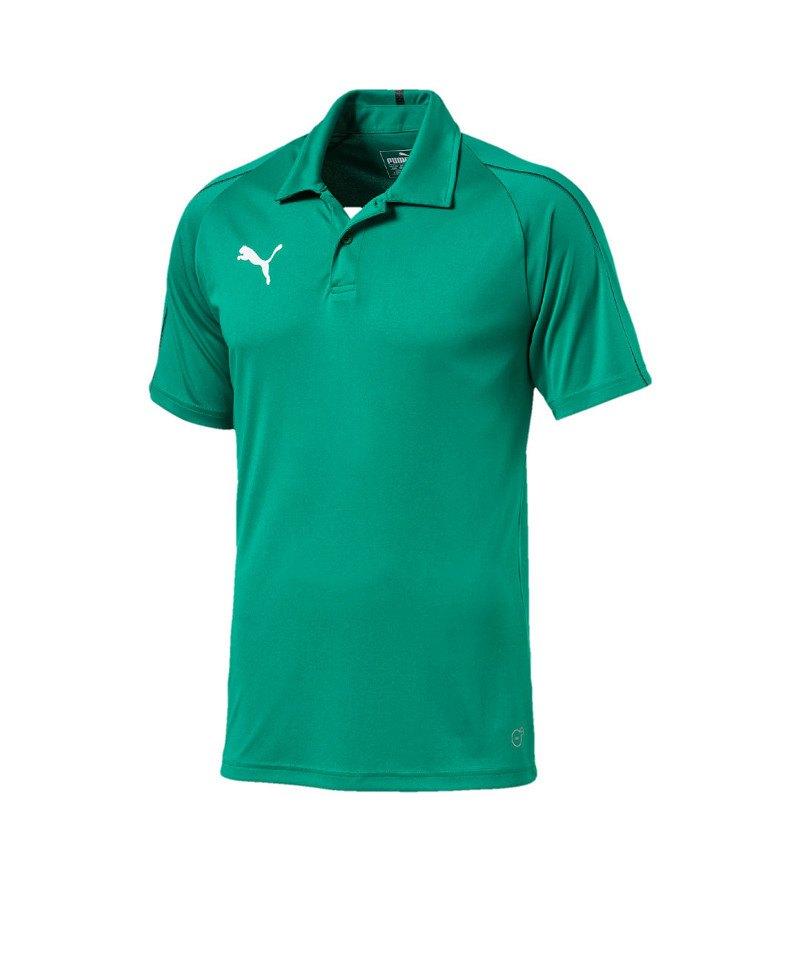 PUMA FINAL Sideline Poloshirt Grün Schwarz F05 - gruen
