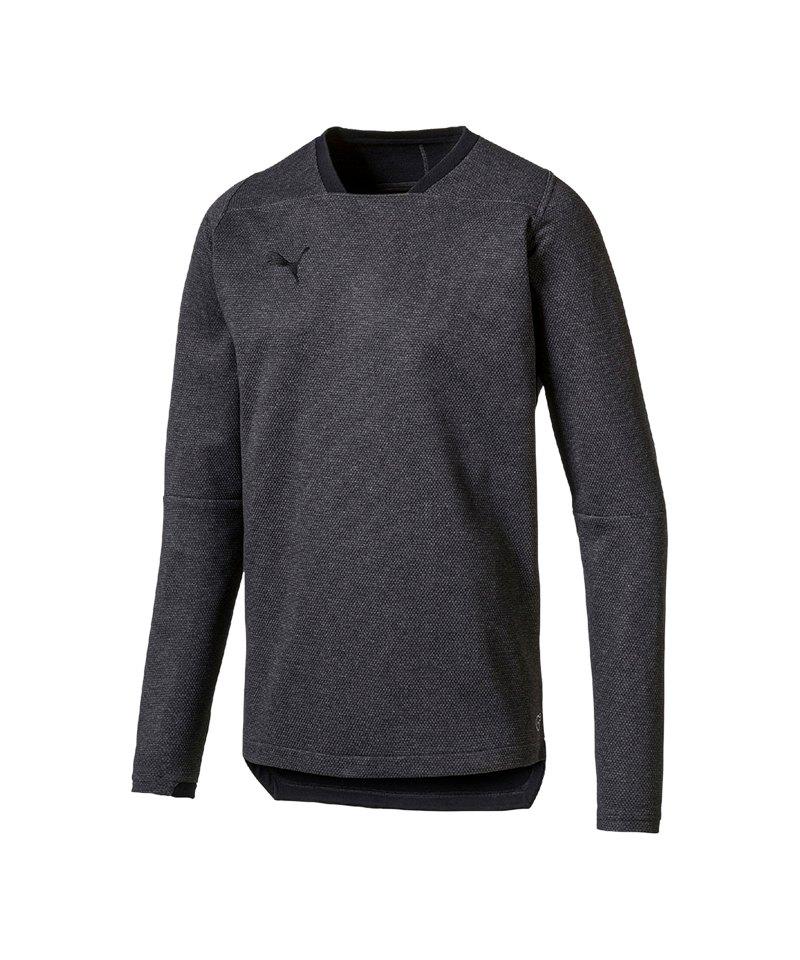 PUMA FINAL Casuals Sweatshirt Grau F33 - grau