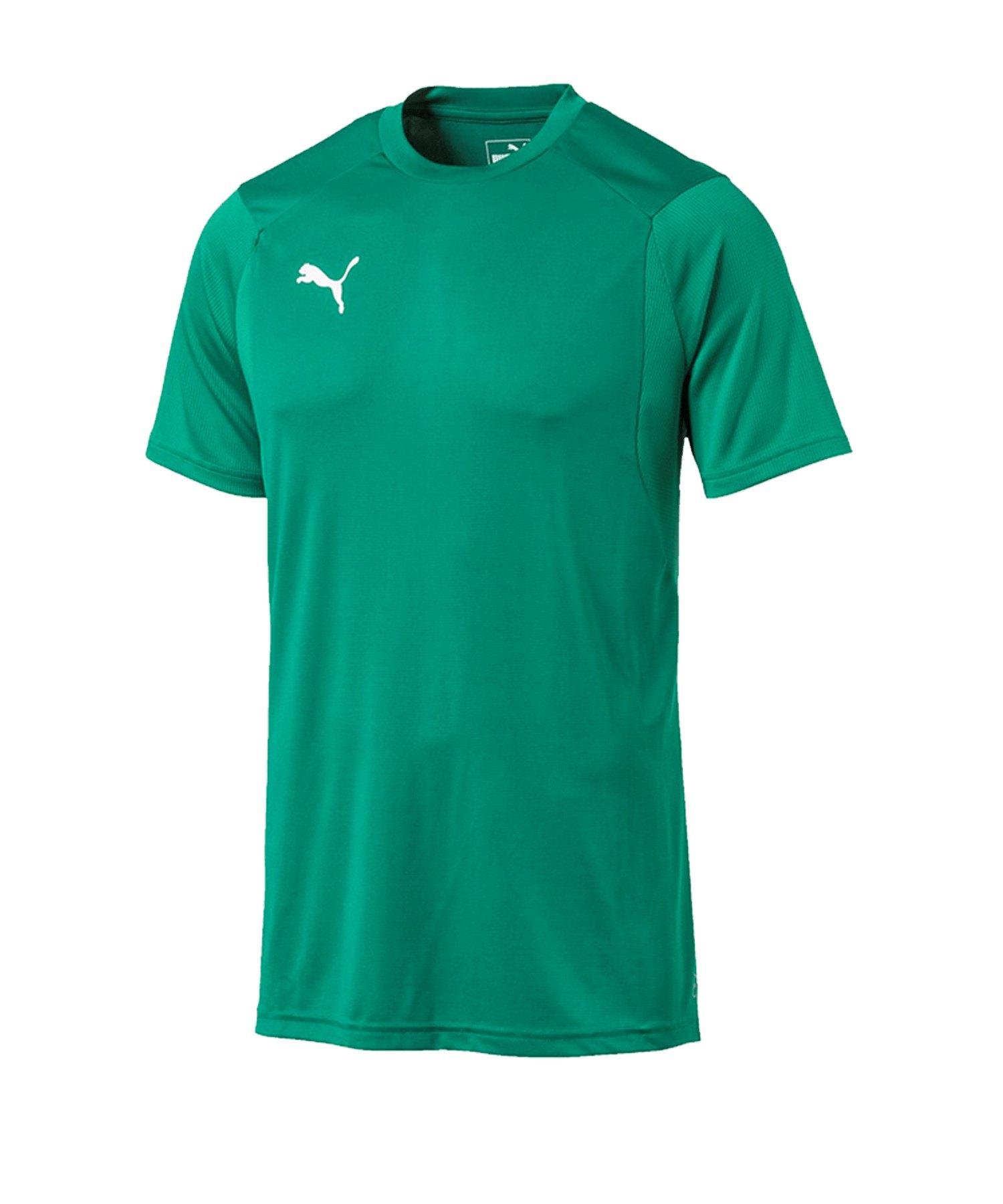 PUMA LIGA Training T-Shirt Grün F05 - gruen