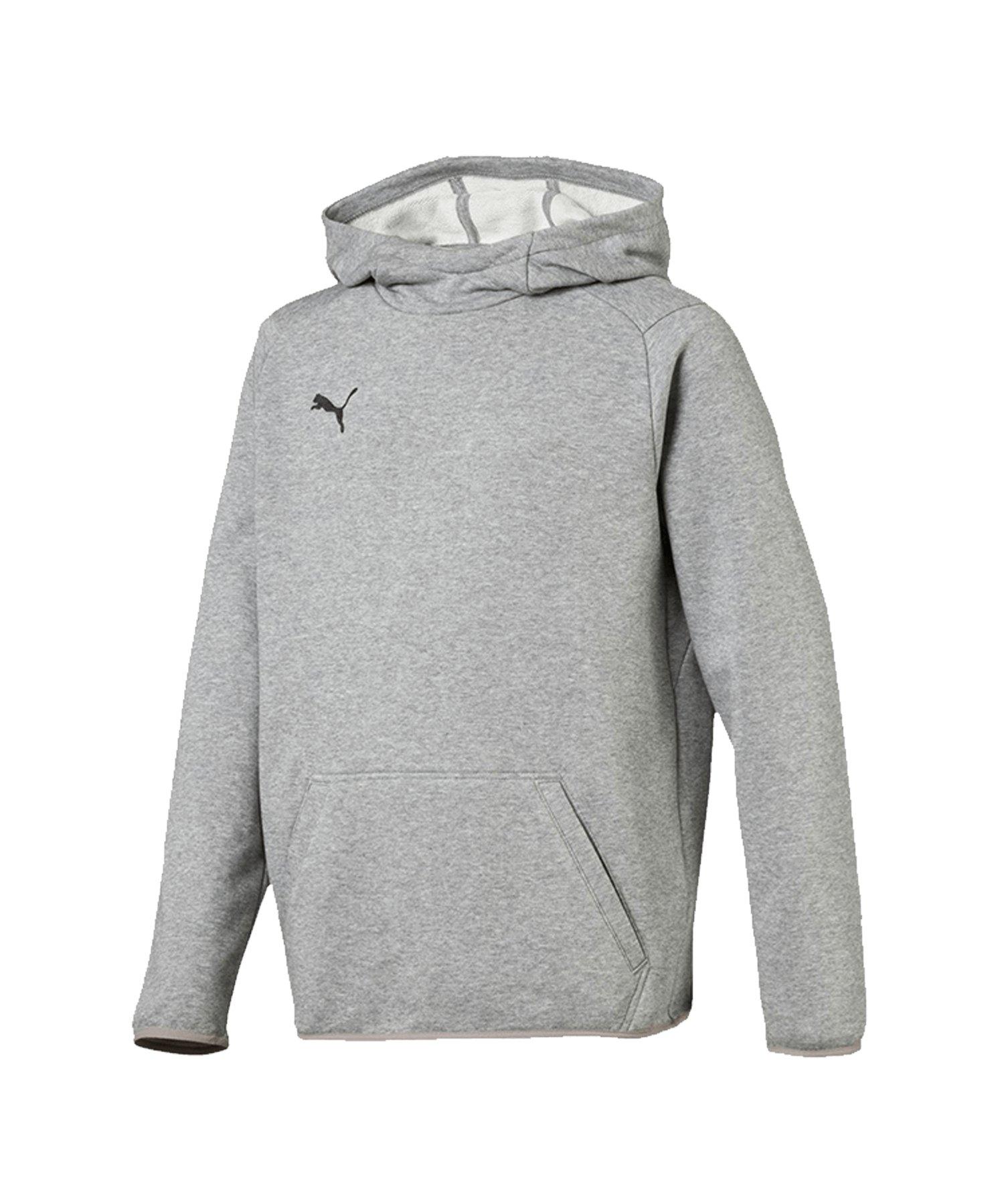 PUMA LIGA Casuals Kapuzensweatshirt Kids Grau F33 - grau