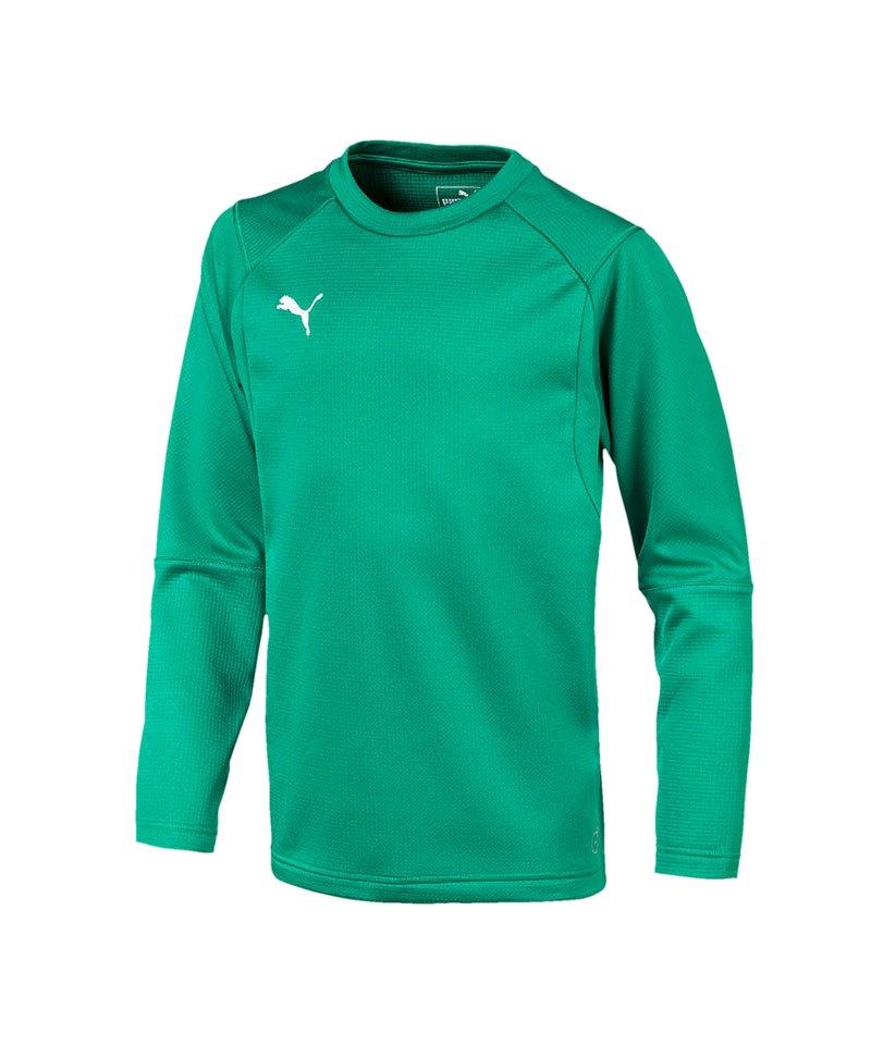 PUMA LIGA Training Sweatshirt Kids Grün F05 - gruen
