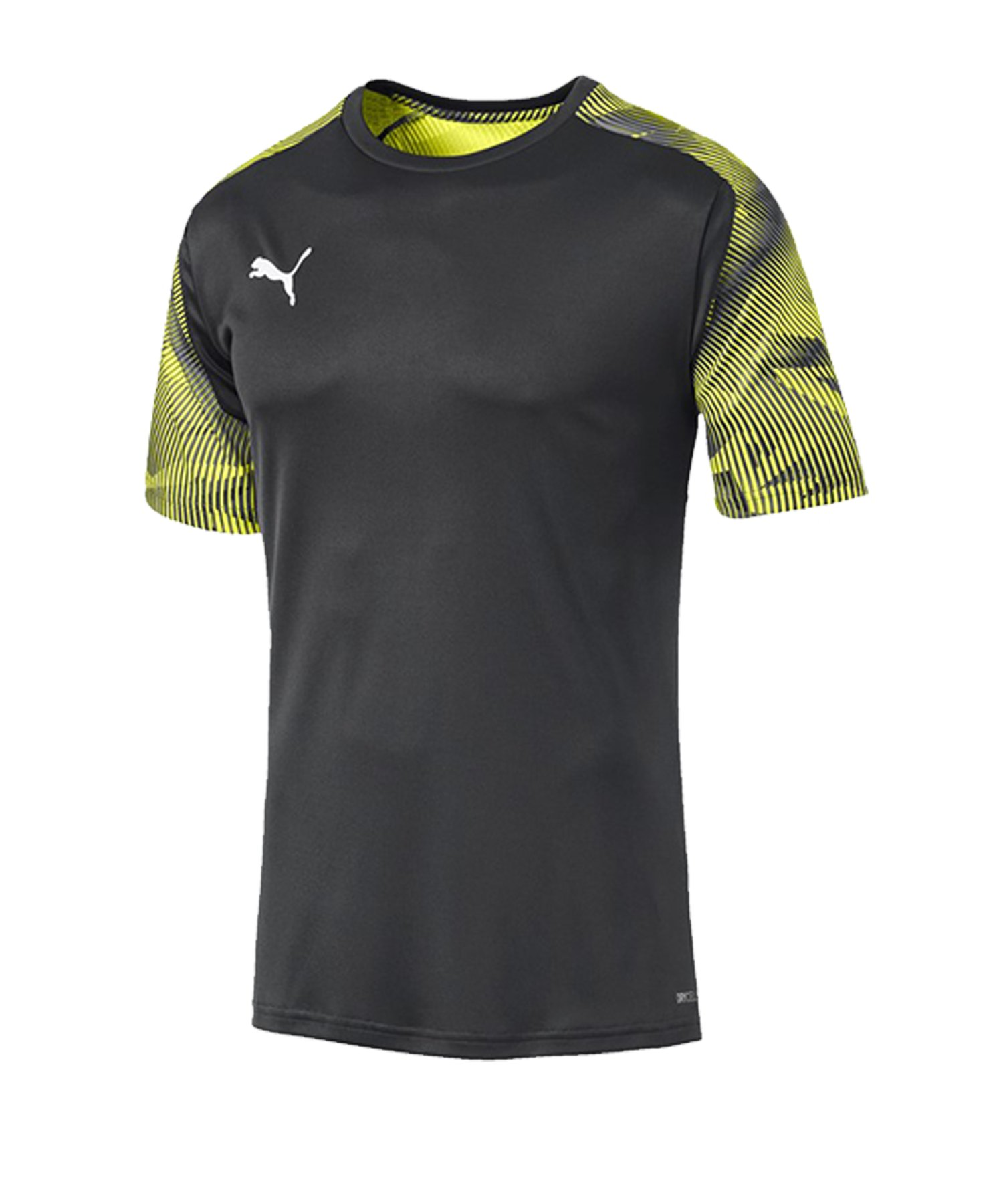 PUMA CUP Training T-Shirt Grau F16 - grau