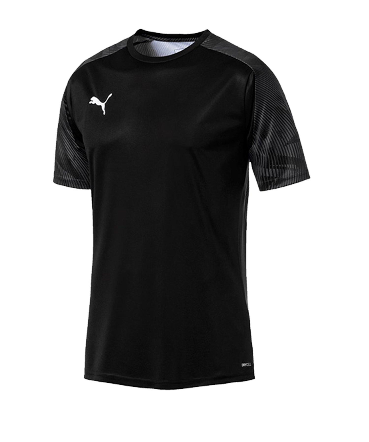 PUMA CUP Training T-Shirt Schwarz F03 - schwarz