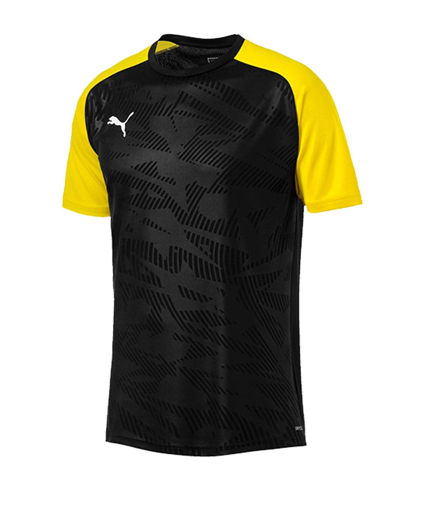PUMA CUP Training Core T-Shirt Schwarz F18 - schwarz