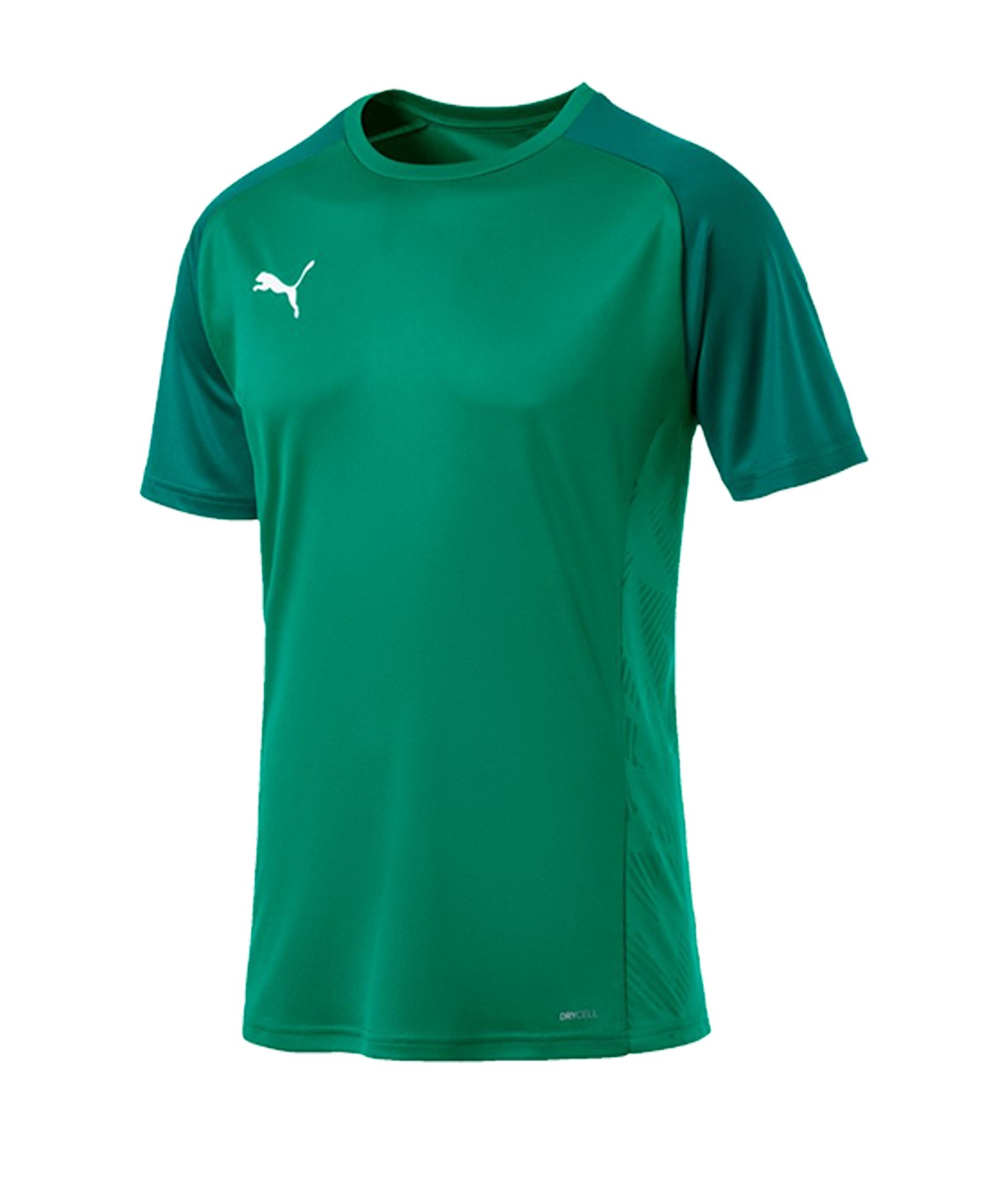 PUMA CUP Sideline Core T-Shirt Grün F05 - gruen
