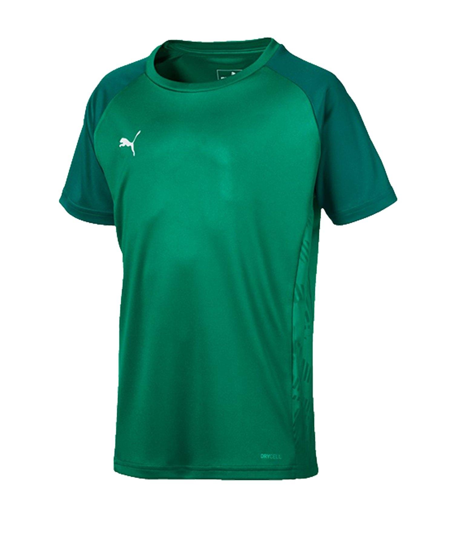 PUMA CUP Sideline Core T-Shirt Kids Grün F05 - gruen