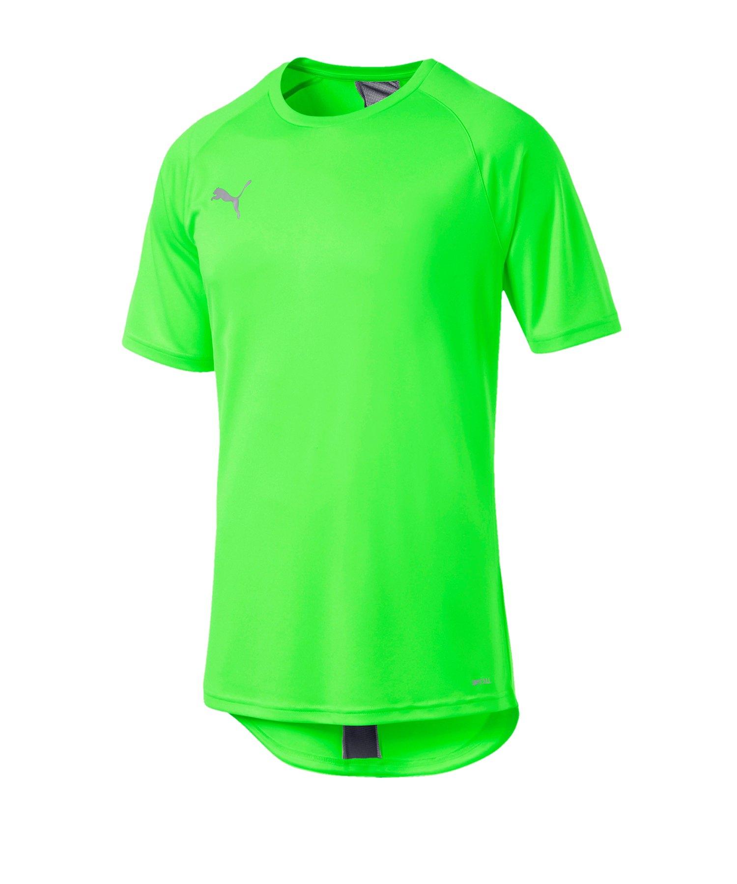 PUMA ftblNXT T-Shirt Grün Schwarz F03 - gruen