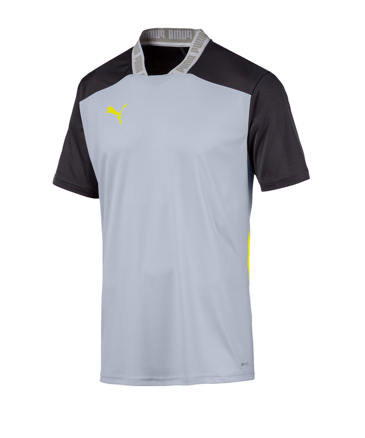 PUMA ftblNXT Pro Polo T-Shirt Grau Schwarz F002 - grau