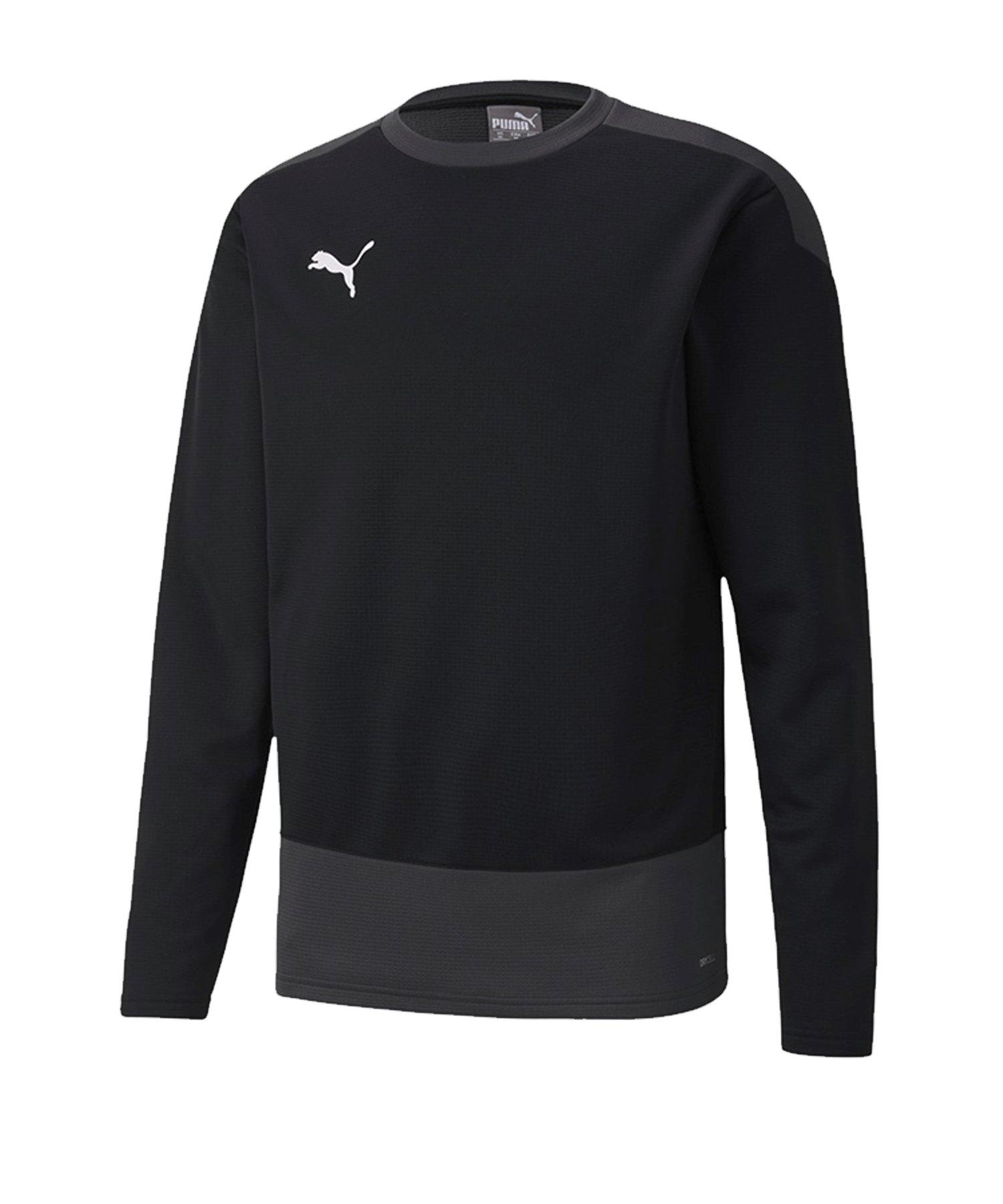 PUMA teamGOAL 23 Training Sweatshirt Schwarz F03 - schwarz