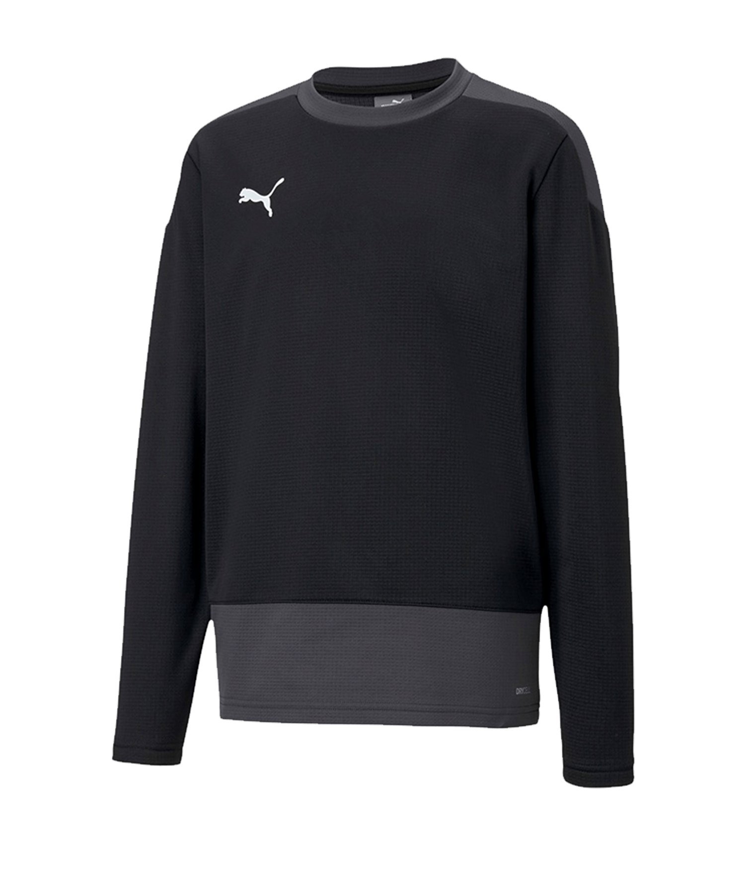 PUMA teamGOAL 23 Training Sweatshirt Kids F03 - schwarz
