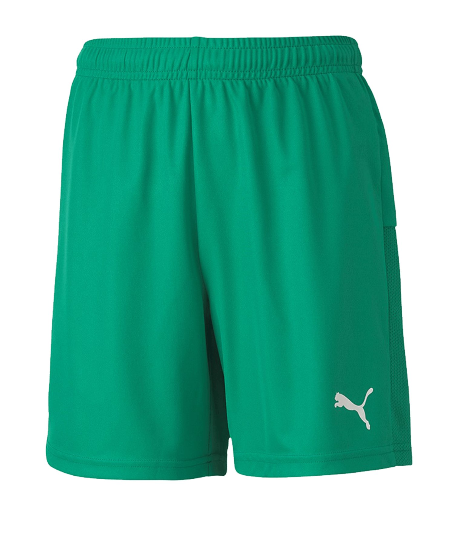 PUMA teamGOAL 23 Knit Short Kids Grün F05 - Gruen