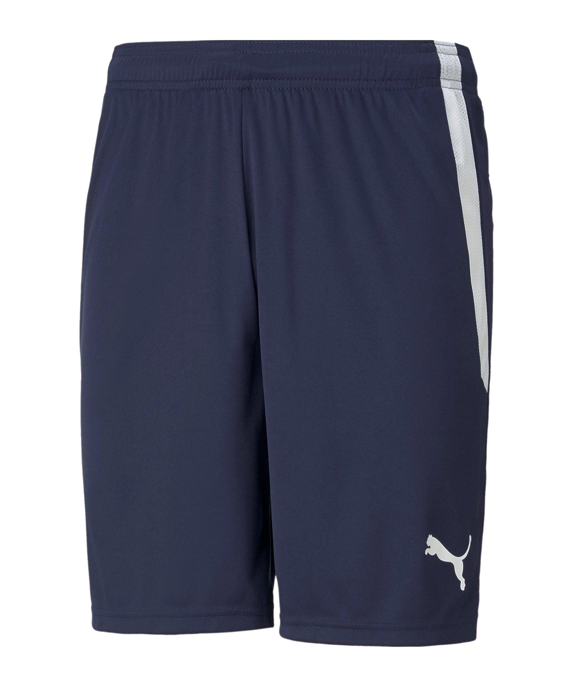 PUMA teamLIGA Shorts Blau F06 - blau