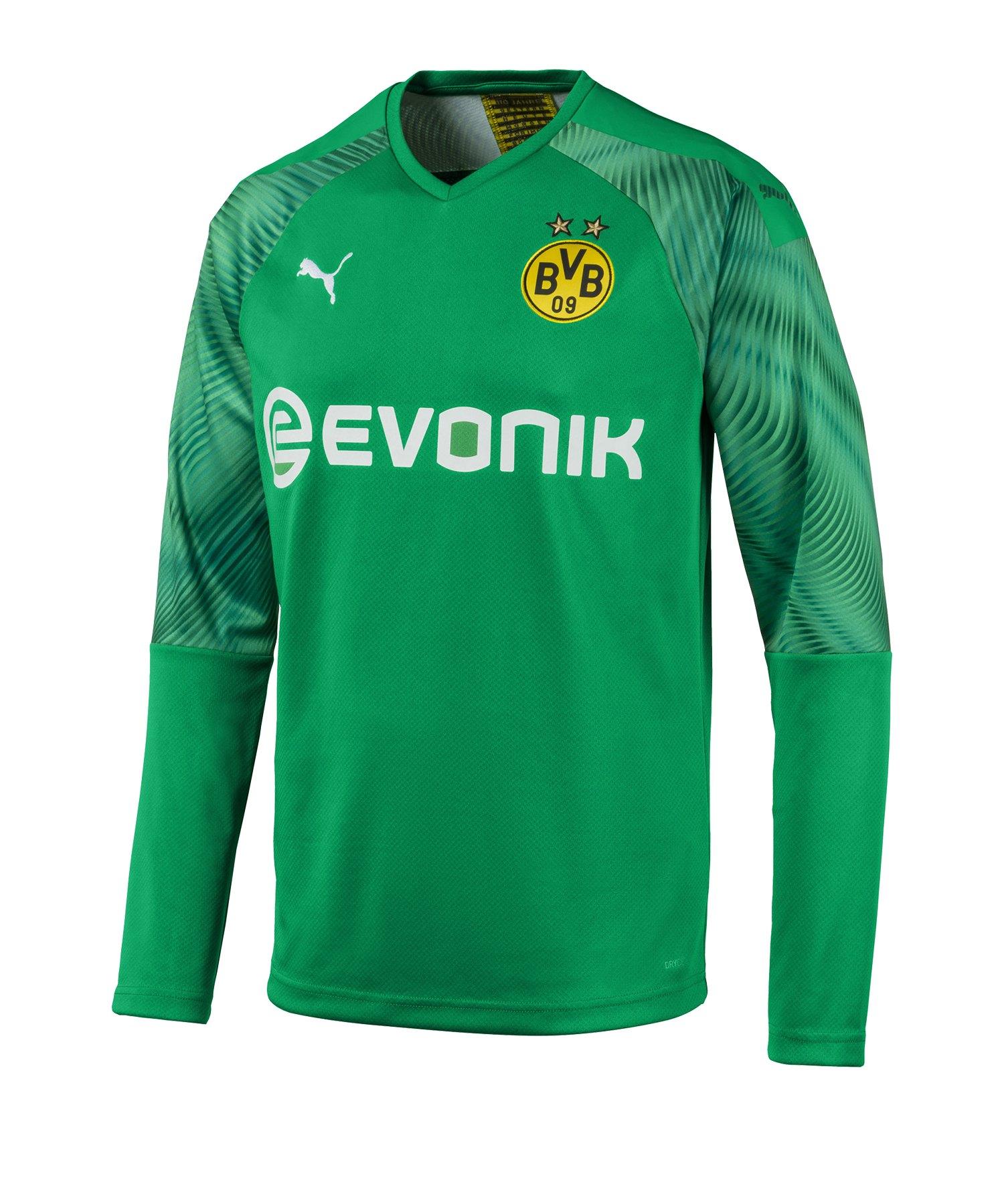 PUMA BVB Dortmund Torwarttrikot 2019/2020 Grün F03 - Gruen