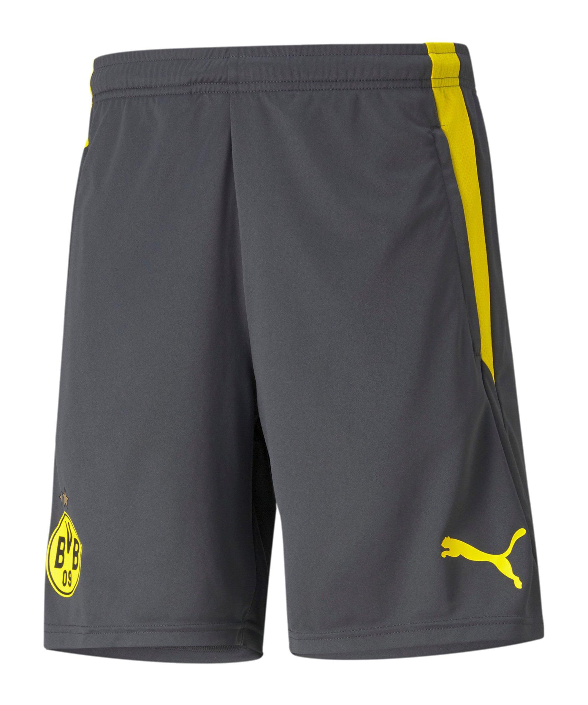 PUMA BVB Dortmund Trainingsshort Grau F04 - grau