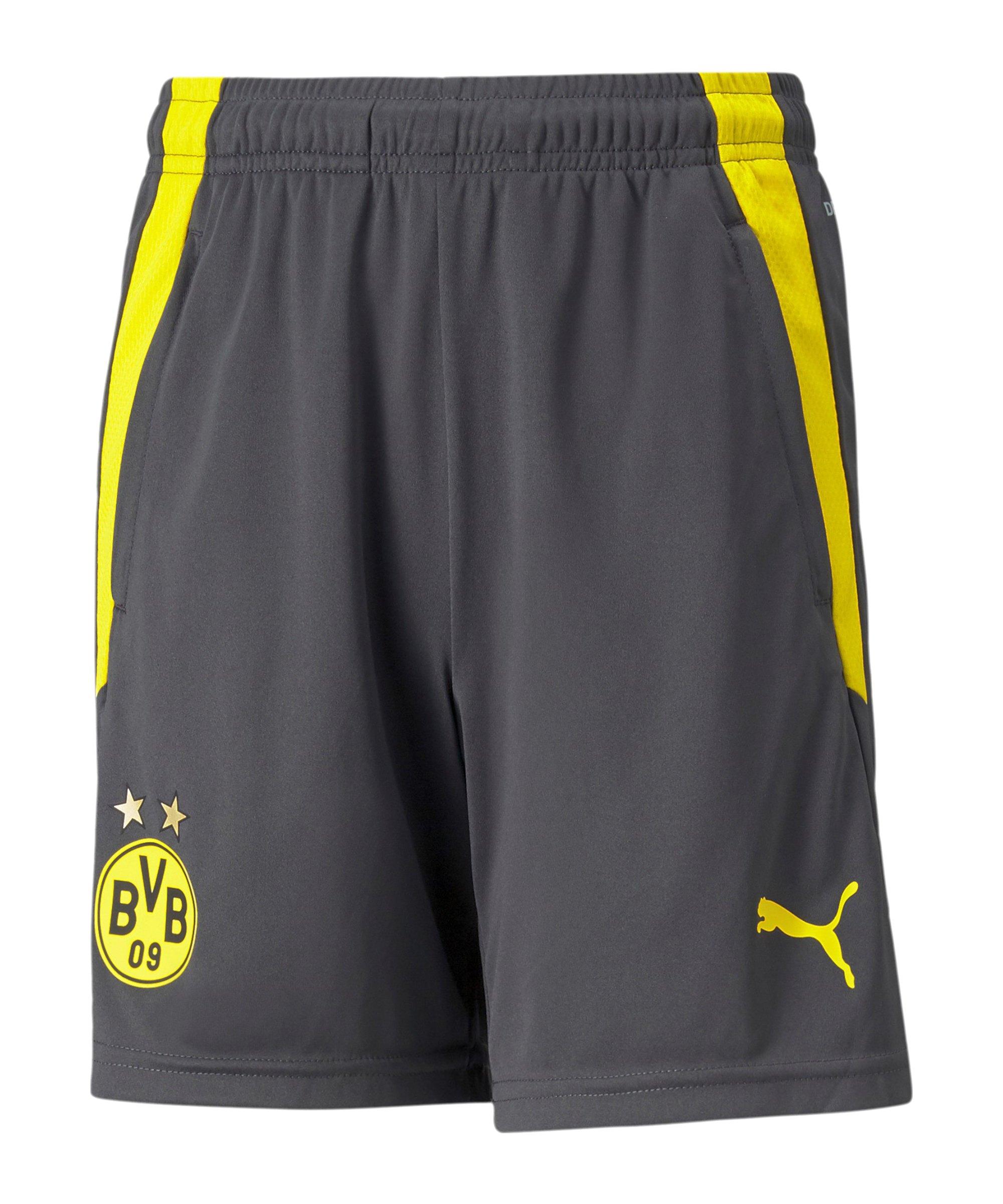 PUMA BVB Dortmund Trainingsshort Kids Grau F04 - grau