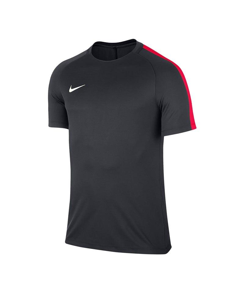 Nike Squad 17 Dry Trainingstop Dunkelgrau F061 - blau