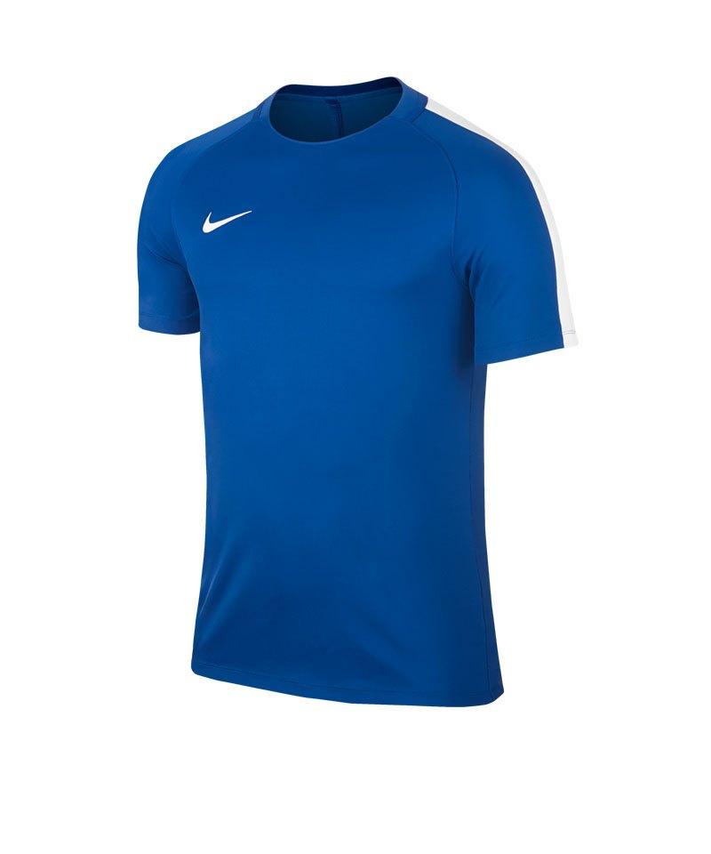 Nike Trainingstop Squad 17 Dry Blau Weiss F463 - beige