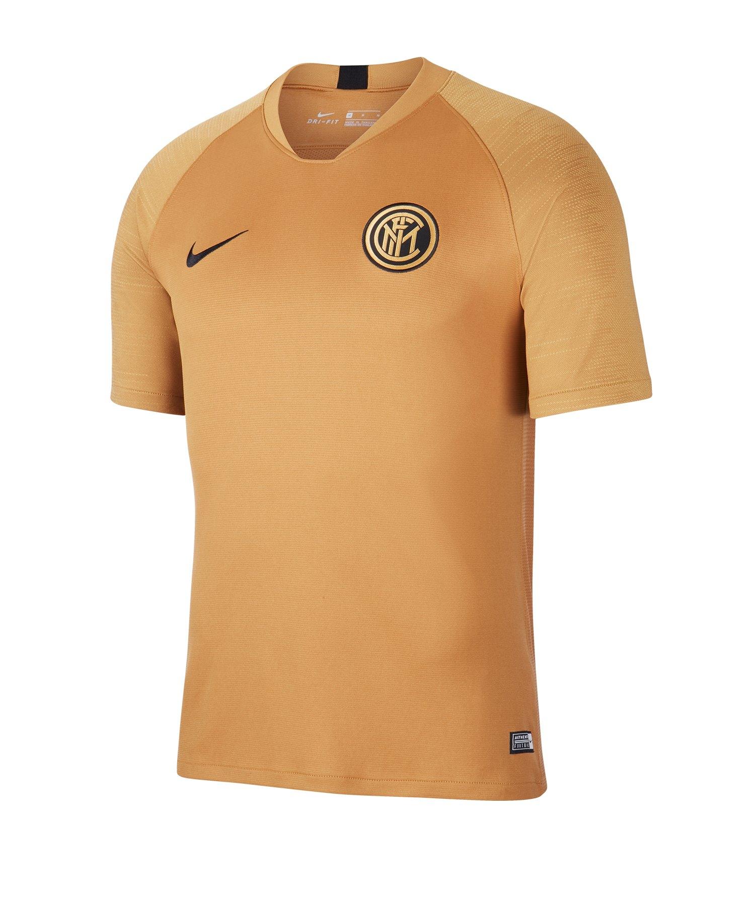 Nike Inter Mailand Trainingsshirt kurzarm F255 - braun