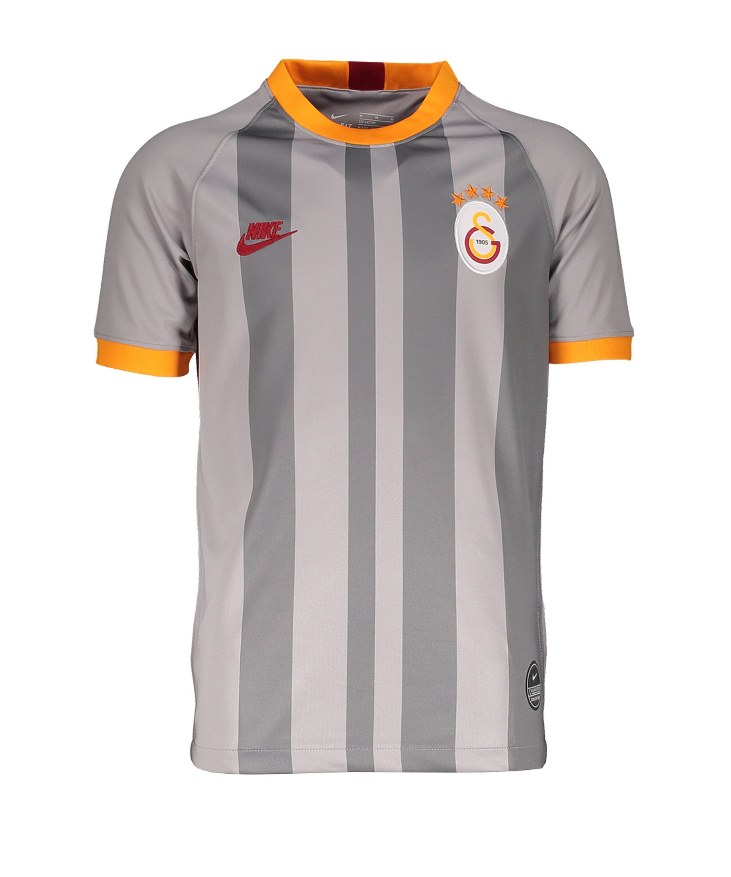 Nike Galatasaray Istanbul Trikot UCL 2019/2020 Kids F060 - grau