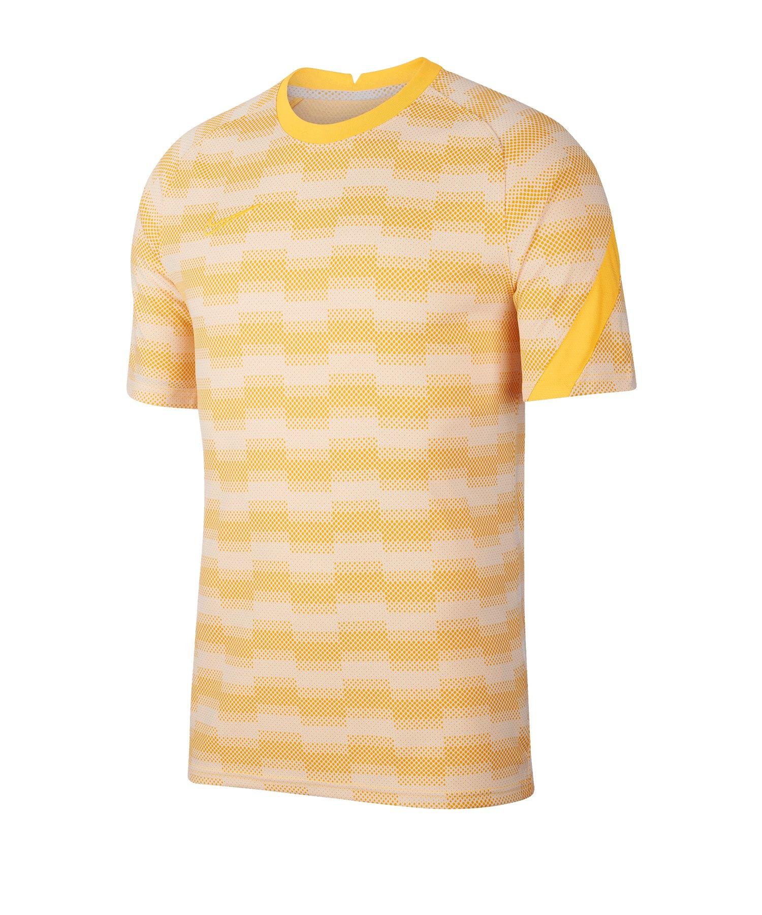 Nike Dri-FIT Academy Pro Shirt kurarm Grau F043 - grau