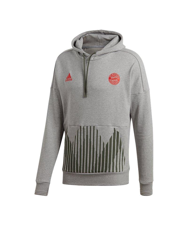 adidas FC Bayern München Kapuzensweatshirt Grau - grau