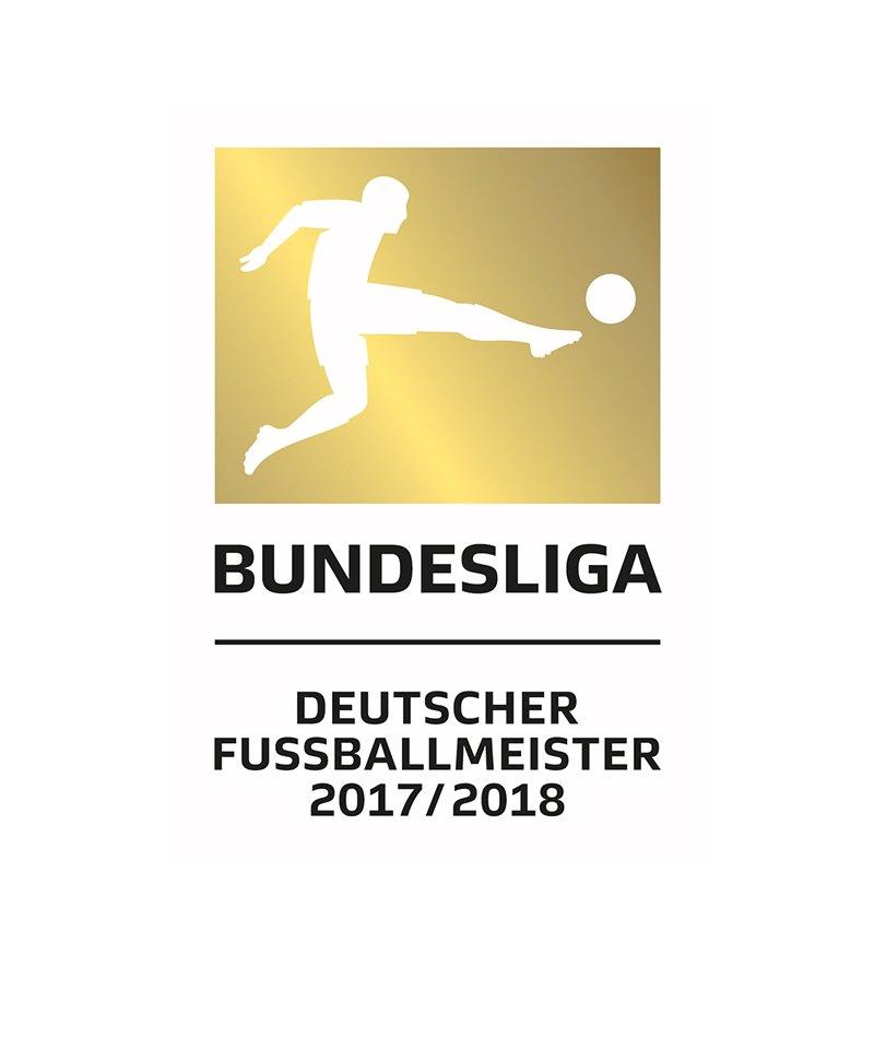DFL Badge offizielles Meister Logo 2019/2020 - weiss