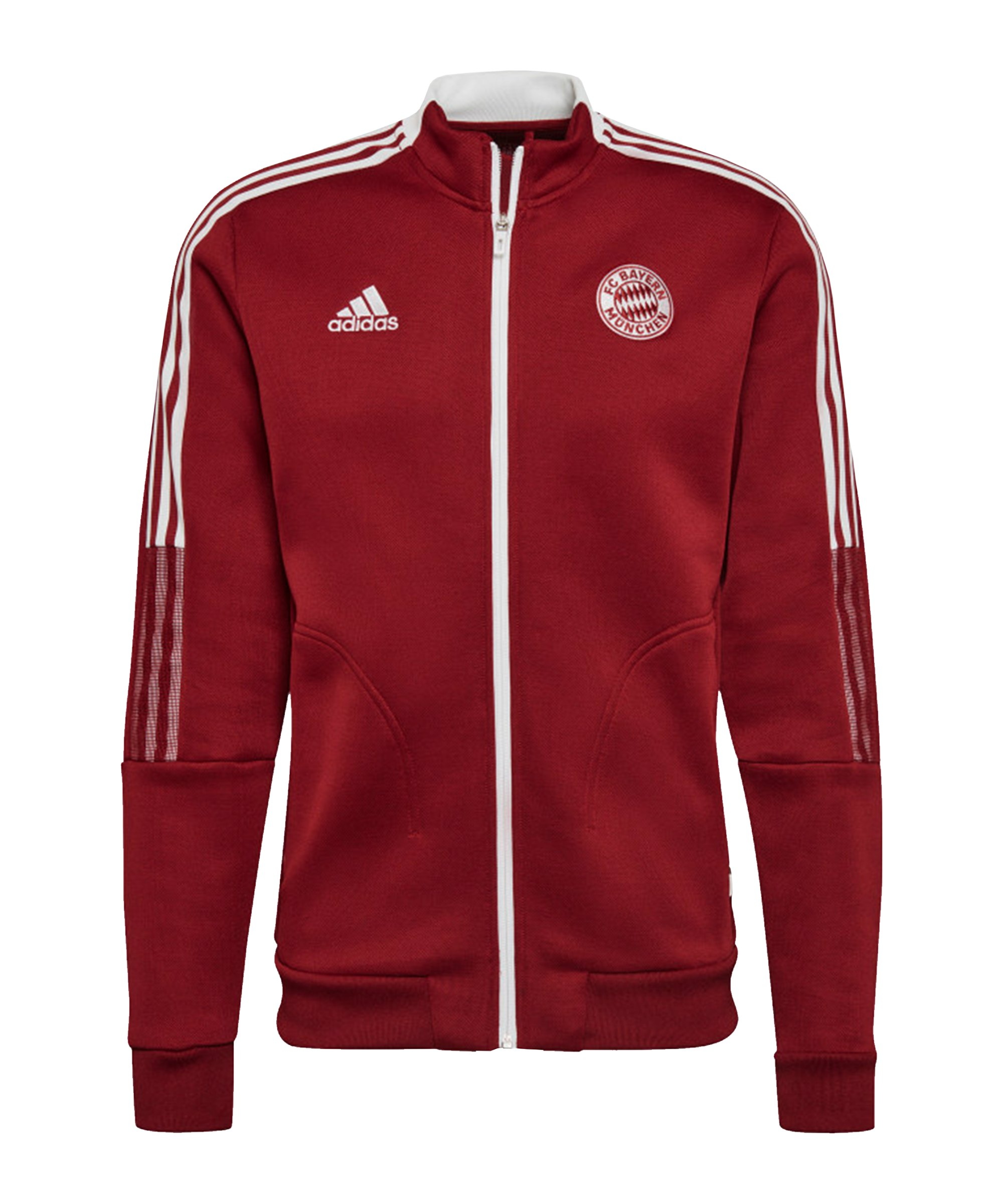 adidas FC Bayern München Anthem Jacke Rot - rot