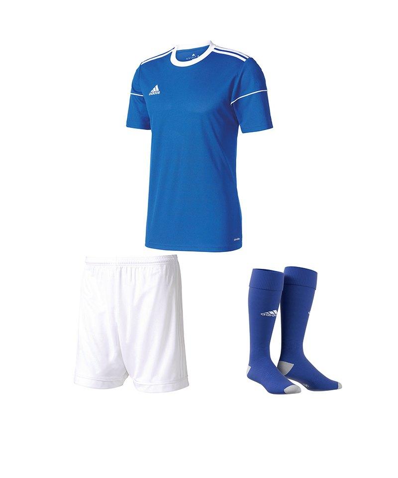 adidas Trikotset Squadra 17 Blau Weiss - blau