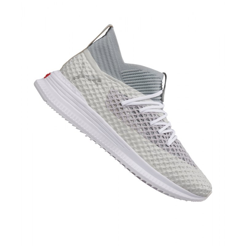 PUMA FUTURE AVID NETFIT Sneaker Limited Edition F01 - grau