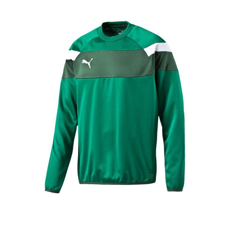 PUMA Sweatshirt Training Spirit II Grün Weiss F05 - gruen