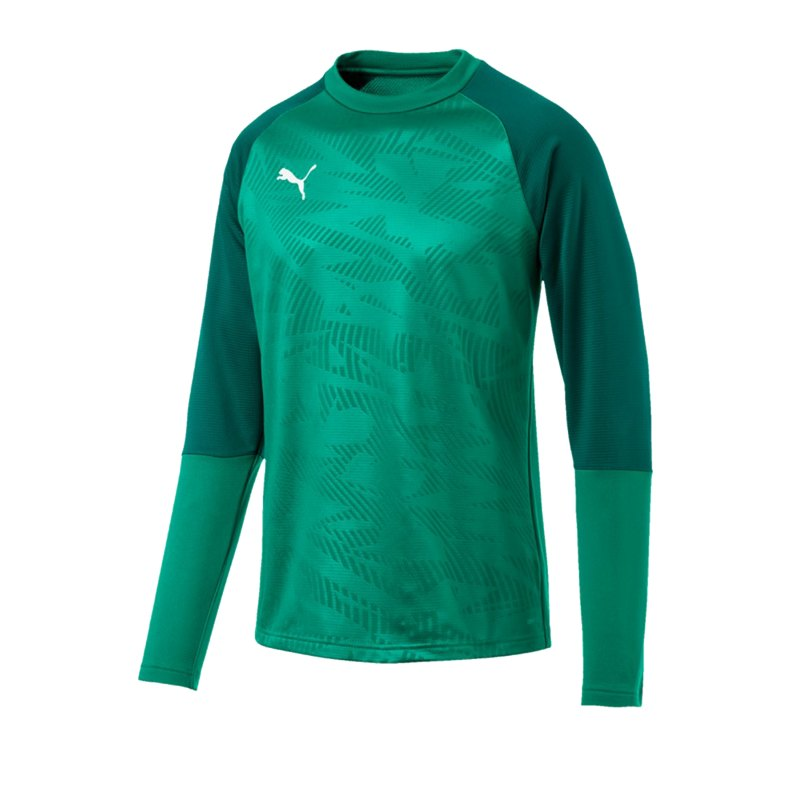 PUMA CUP Training Core Sweatshirt Grün F05 - gruen