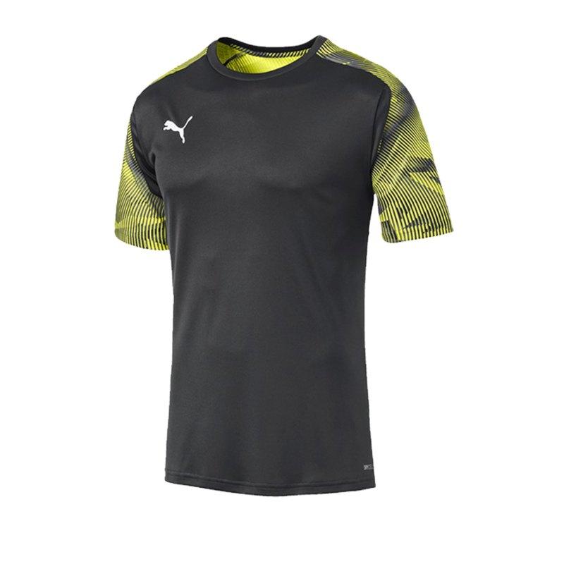 PUMA CUP Training T-Shirt Grau F16 - grau