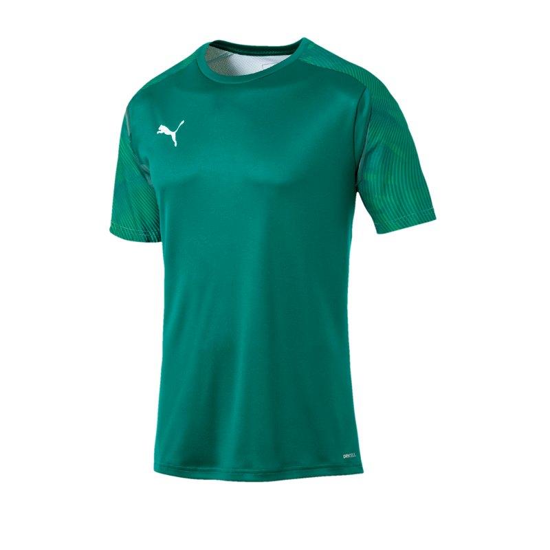 PUMA CUP Training T-Shirt Grün F05 - gruen