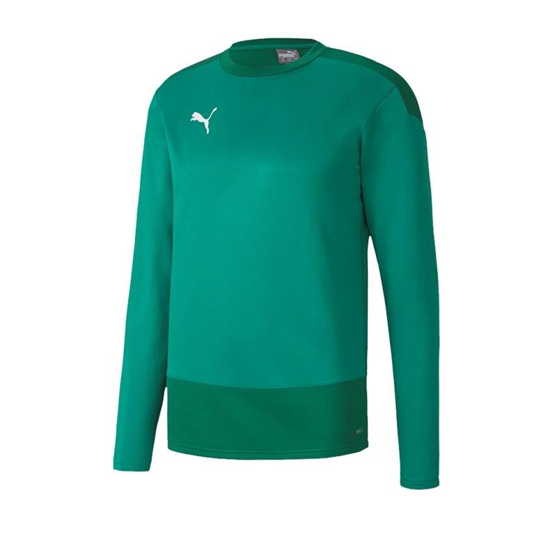 PUMA teamGOAL 23 Training Sweatshirt Grün F05 - Gruen