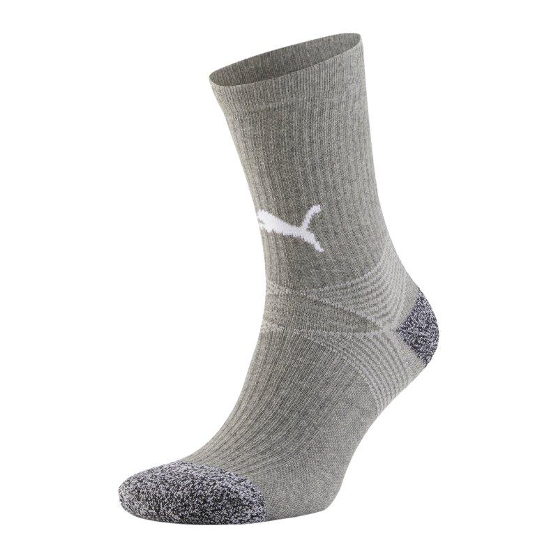 PUMA teamLIGA Socken Grau Weiss F51 - grau
