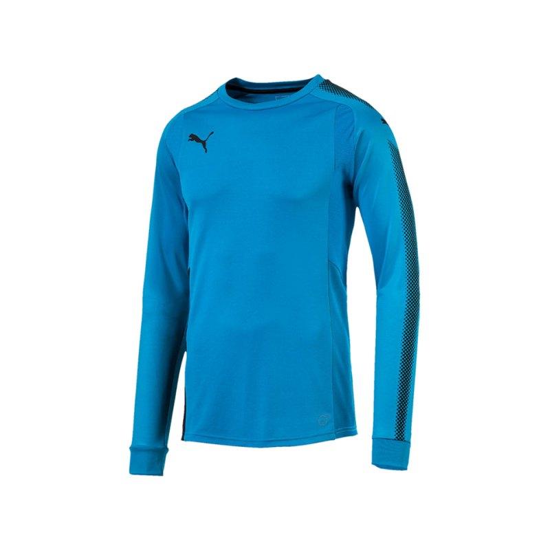 PUMA Torwarttrikot GK Shirt Blau Schwarz F62 - blau