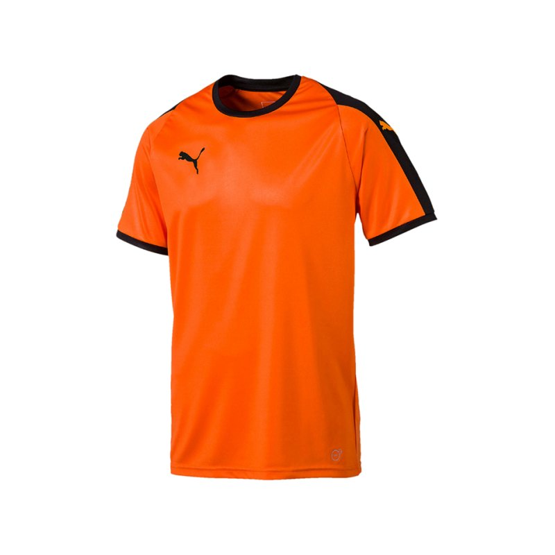 PUMA LIGA Trikot kurzarm Kids Orange Schwarz F08 - orange