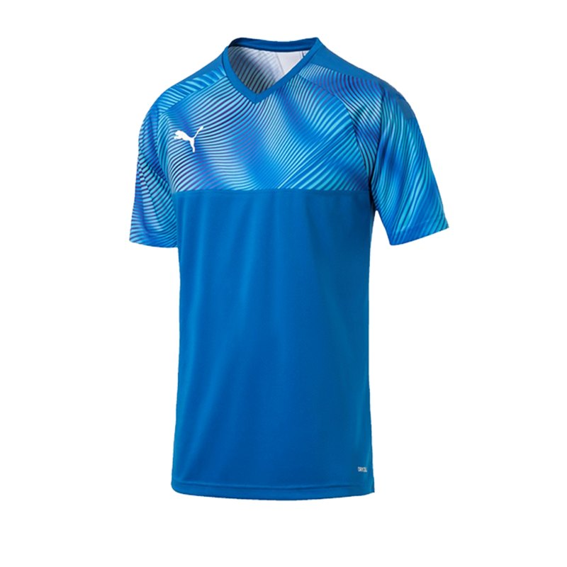 PUMA CUP Jersey Trikot kurzarm Blau F02 - blau