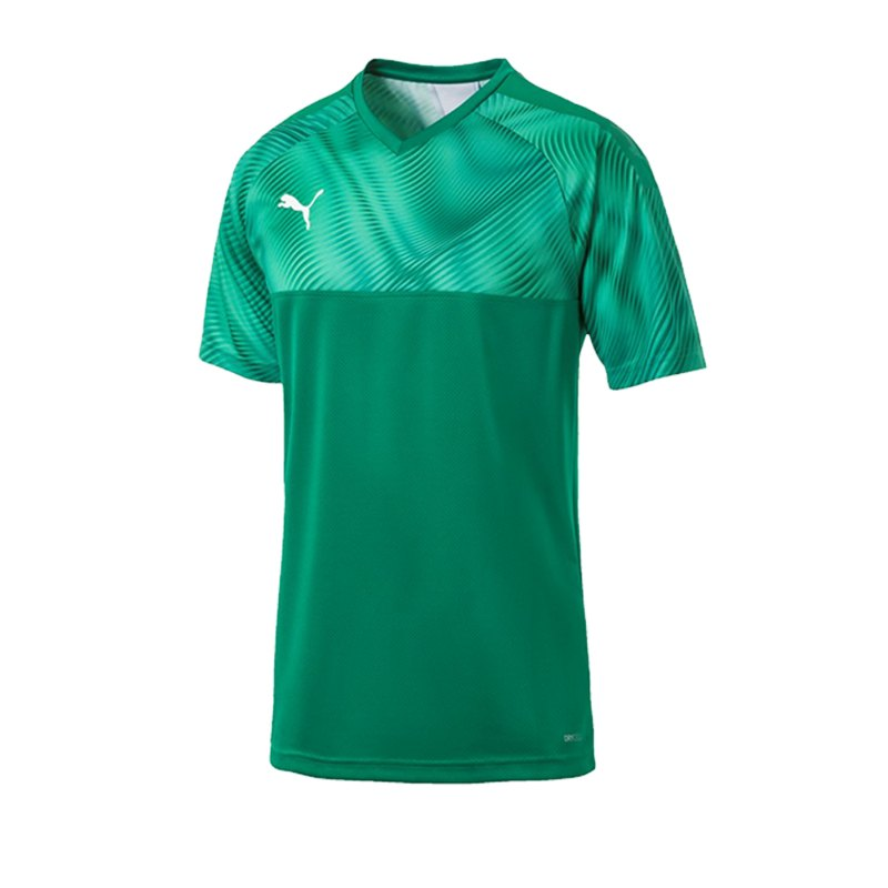 PUMA CUP Jersey Trikot kurzarm Grün F05 - gruen